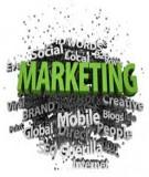 Thiết kế một chiến lược Marketing điển hình