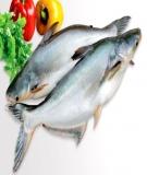 Quy chế nhập khẩu của Mỹ đối với cá, nhuyễn thể và thuỷ sản các loại