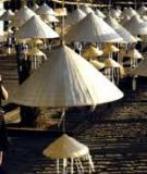 Chiếc nón lá trong đời sống văn hóa Việt Nam