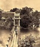 Tài liệu: Lịch sử Việt Nam