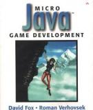 Addison wesley Micro Java™ Game Development