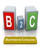 Tổng quan Thương mại điện tử B2C