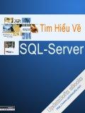 Tìm hiểu ngôn ngữ SQL - Server