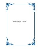 Bản cáo bạch Vincom