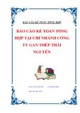 """Đề tài luận văn tốt nghiệp """"Báo cáo kế toán tổng hợp tại chi nhánh công ty gang thép Thái Nguyên"""""""