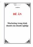 """Đề án """" Marketing trong kinh doanh của doanh nghiệp """""""