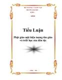"""Tiểu luận """"Phật giáo một hiện tượng tôn giáo và triết học của dân tộc"""""""