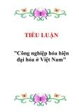 """Tiểu luận """"Công nghiệp hóa hiện đại hóa ở Việt Nam"""""""