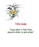 Tiểu luận: Lạm phát ở Việt Nam, nguyên nhân và giải pháp