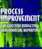 Process Improvement For Effective Budgeting And Financial Reporting (Wiley-2003)