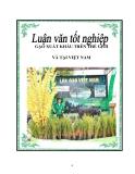"""Luận văn tốt nghiệp về """"Đẩy mạnh xuất khẩu gạo của Việt Nam theo quan điểm Marketing-mix"""""""