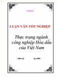 """Luận văn tốt nghiệp """"Thực trạng ngành công nghiệp Hoá dầu của Việt Nam"""""""
