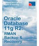 Oracle Database Backup and Recovery Advanced User's Guide