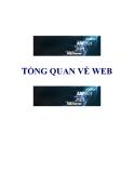 Tổng quan về WEB