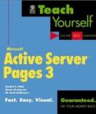 MICROSOFT ACTIVE SERVER PAGES 3.0