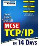 Teach Yourself TCP/IP in 14 Days,