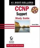 Exam :640-606 Support -Version 1-2003