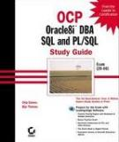 OCP: Oracle8i DBA SQL and PL/SQL Study Guide