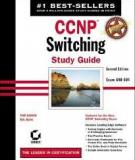 Switching Study Guide