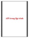 API trong lập trình