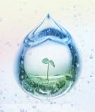 Tìm hiểu về hiện tượng ô nhiễm nước