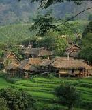 Mặt trời với nghi lễ trên nương của người mãng (mạng ư) ở tây bắc Việt Nam