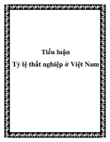 """Luận văn """" Tỷ lệ thất nghiệp ở Việt Nam"""""""