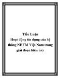 """Luận văn """" Hoạt động tín dụng của hệ thống NHTM Việt Nam trong giai đoạn hiện nay"""""""