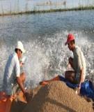 Chủ động nguồn thức ăn cho cá