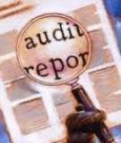 Bài tập Báo cáo Kiểm toán