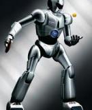 ĐIỀU KHIỂN ROBOT BẰNG LOGIC MỜ