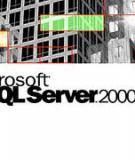 Hướng dẫn cài đặt SQL Server 2000