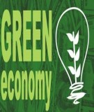 Bài tập môn học Kinh tế môi trường