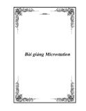 Bài giảng Microstation