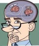 Những điều thú vị về bộ não