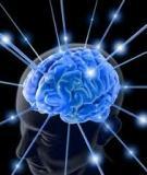 Sổ tay giúp trí nhớ cận lâm sàng