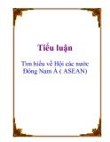 Tiểu luận: Tìm hiểu về Hội các nước Đông Nam Á ( ASEAN)