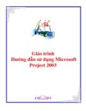 Giáo trình: Hướng dẫn sử dụng Microsoft Project 2003