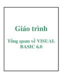 Giáo trình: Tổng quan về VISUAL BASIC 6.0