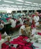 Sự chuyển hóa sức lao động thành hàng hóa