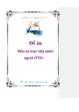 Đề án: Đầu tư trực tiếp nước ngoài (FDI)