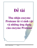 Đề tài: Thu nhận enzyme Protease từ vi sinh vật và những ứng dụng của enzyme Protease