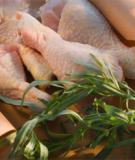 Thịt gà mái- Thực phẩm chất lượng cao