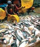 Công nghiệp chế biến thịt, cá_ Chương 3