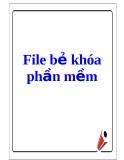 File bẻ khóa phần mềm