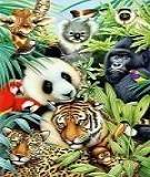 Tài liệu Kỹ năng bán hàng hoàn hảo học từ thế giới động vật