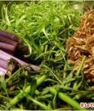 Rau ghém trong bữa ăn người Hà Nội