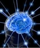 Các phương pháp suy luận và sáng tạo