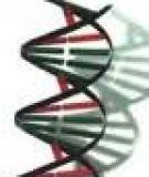 Chương 2: Công nghệ DNA tái tổ hợp