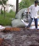 Phương pháp chế biến và sử dụng phân hữu cơ trong nông nghiệp